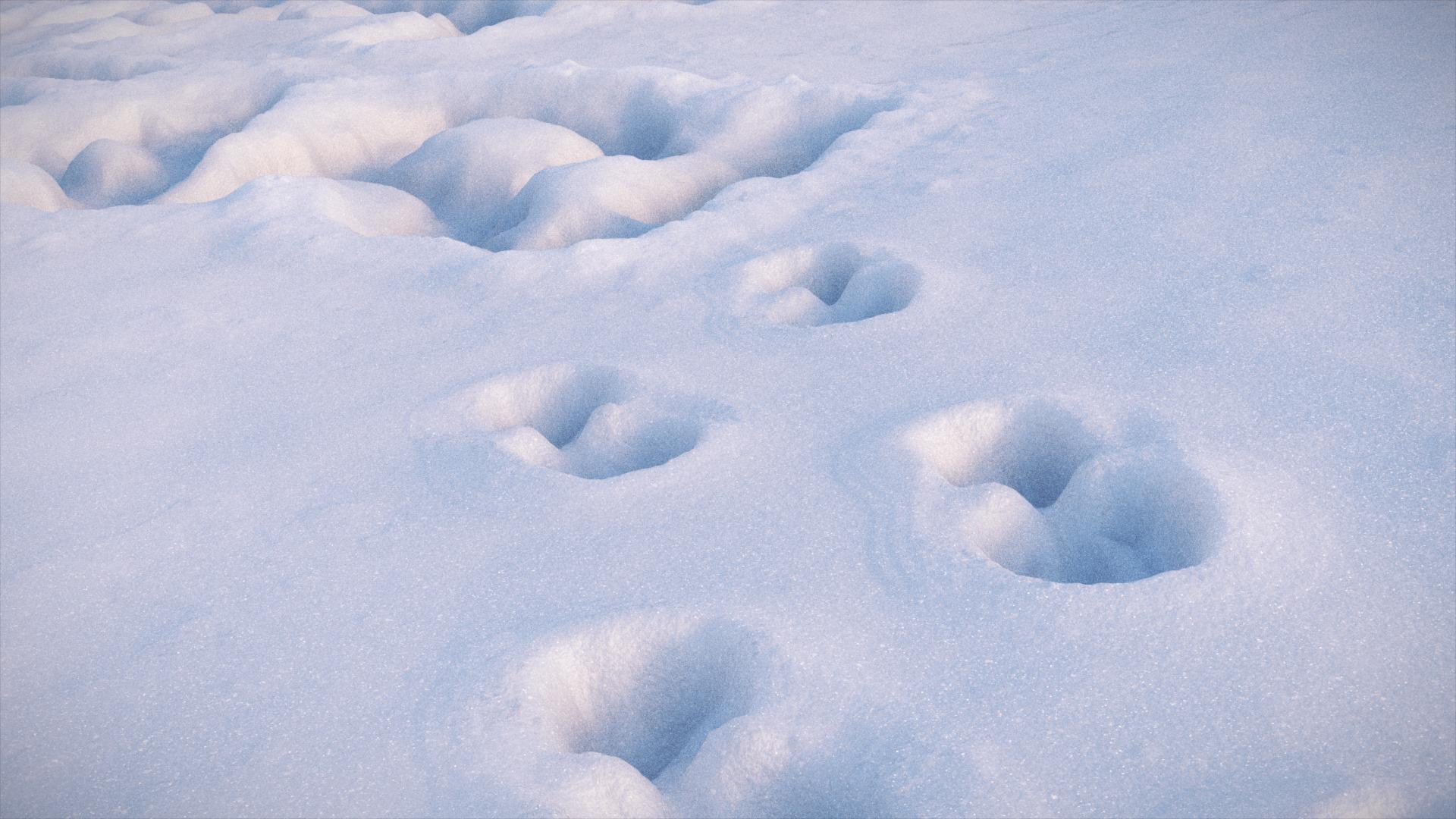 newyear_snow_03