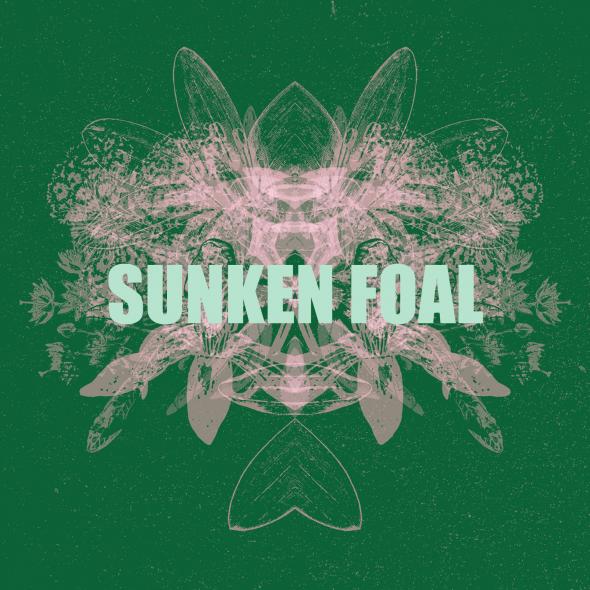 sunken_foal